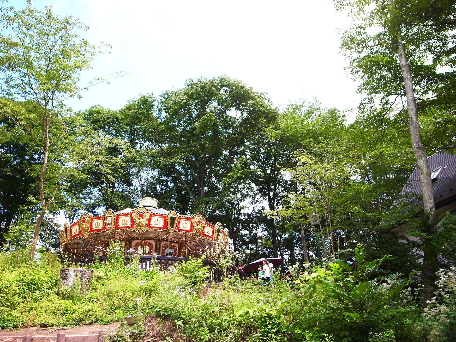 森のメリーゴーランド