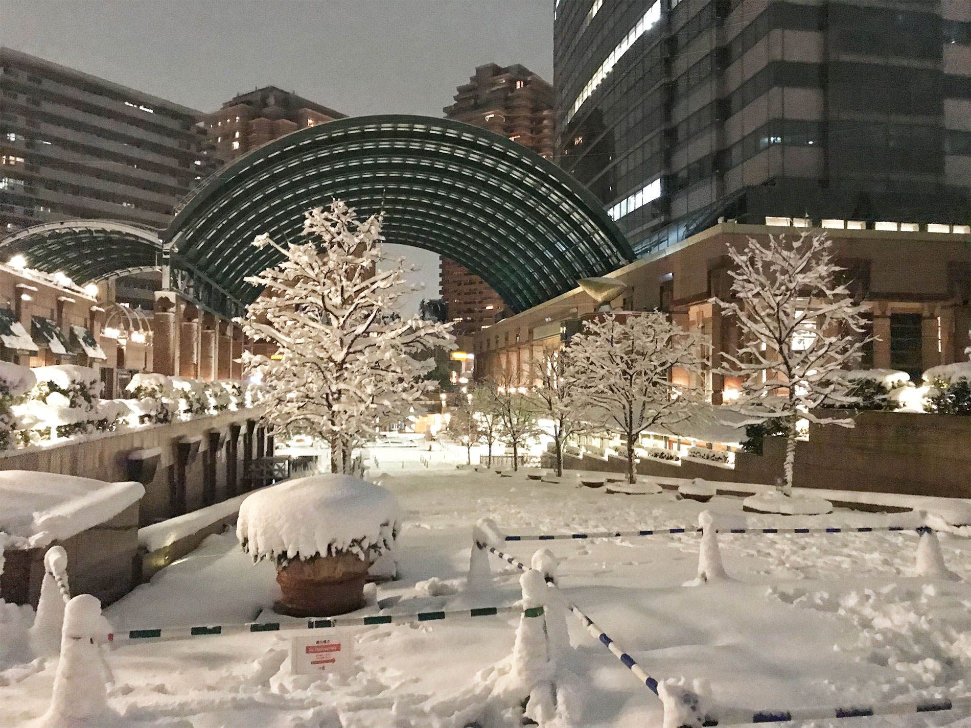 東京都 雪 / 2018