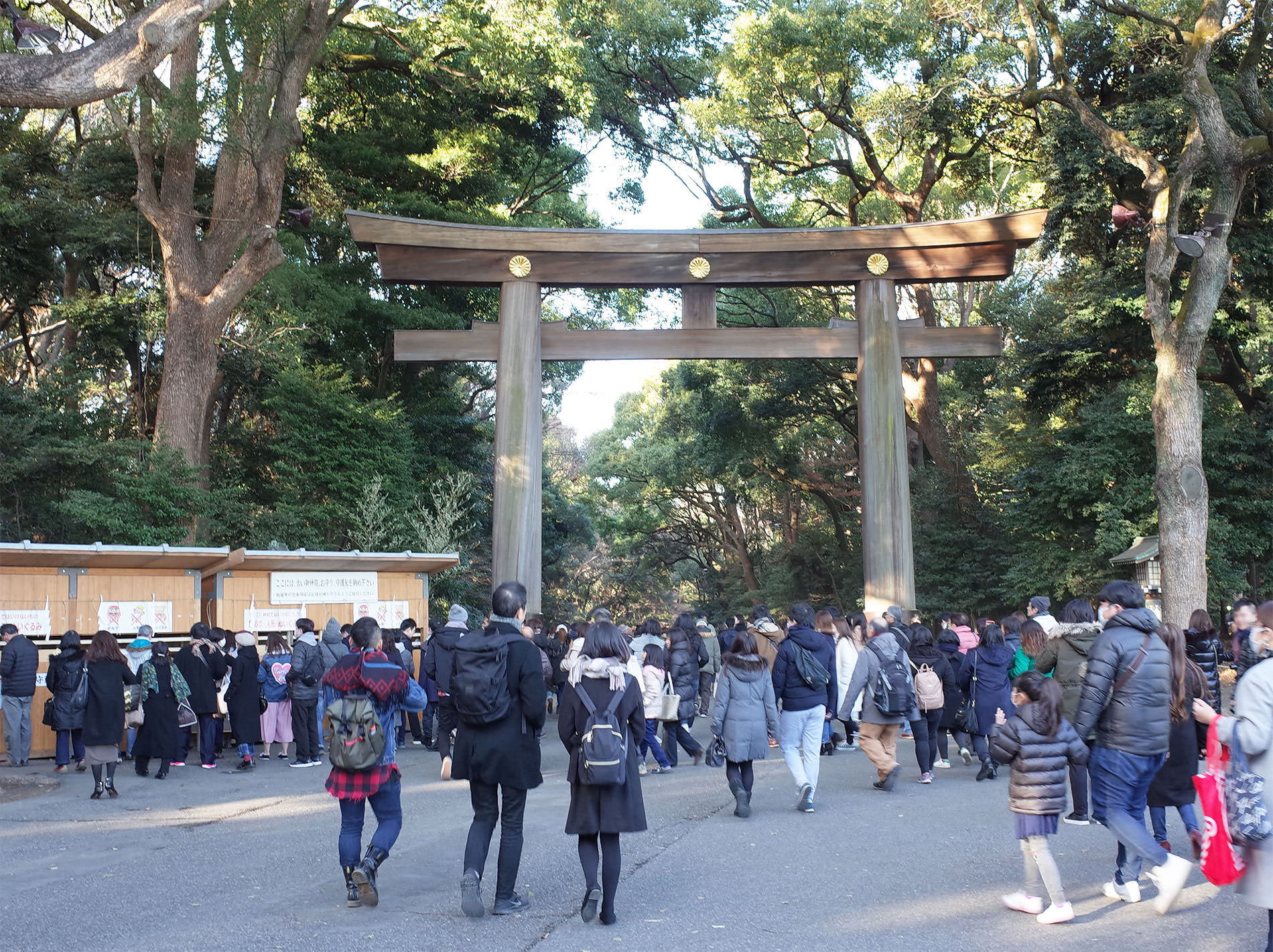 初詣2019 / The first Tokyo's shrine visit of 2019