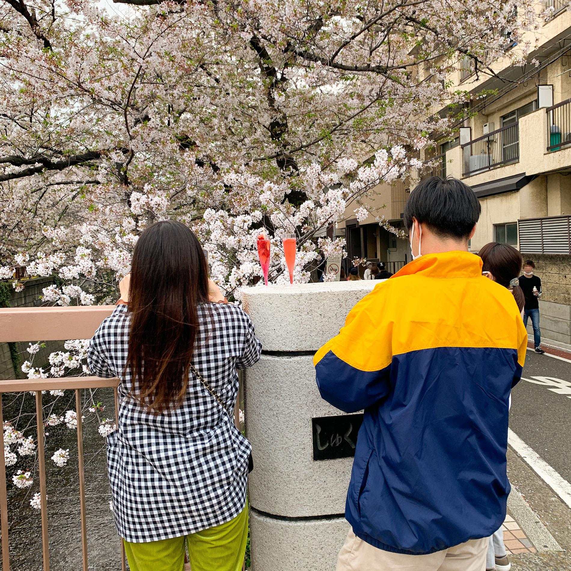 桜とコロナと / 2021 | Sakura and Covid-19 in Tokyo 2021